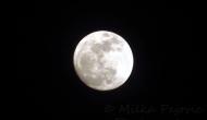 Full Moon – Perigee SuperMoon
