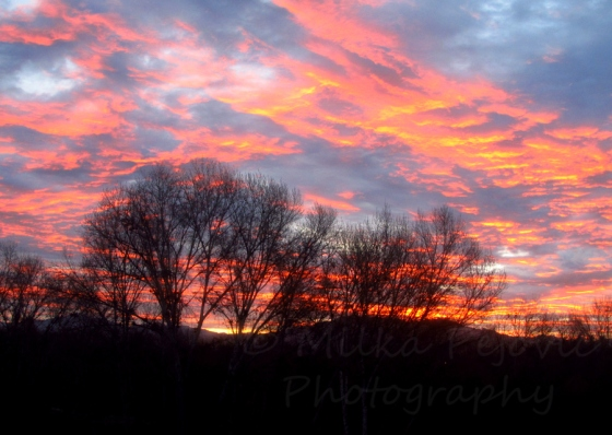 The sun is coming out - sunrise with red and pink clouds