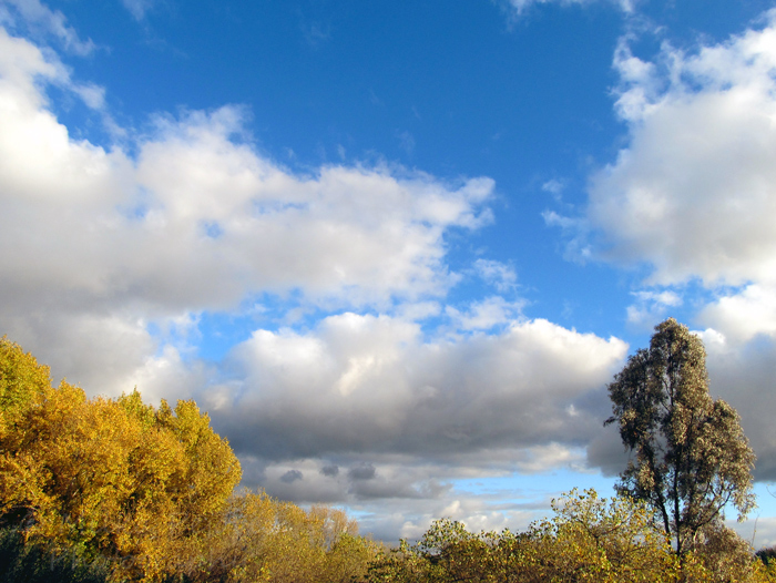 Big puffy white clouds after the rain in San Diego