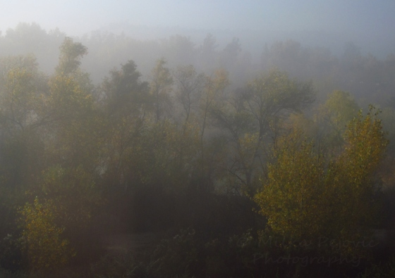 Photo of a foggy morning in San Diego