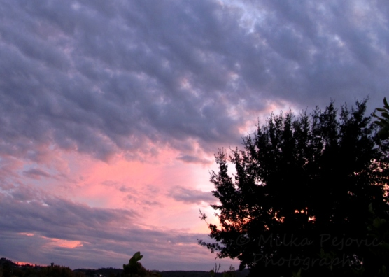Pink and violet clouds at sunset