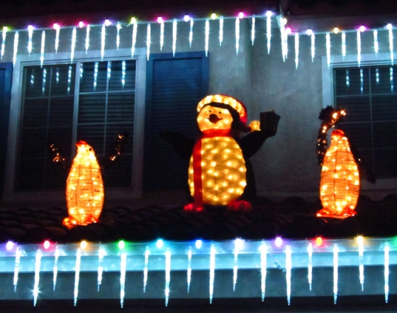WordPress weekly photo challenge: Illumination - Penguin Christmas lights