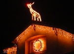 Rudolph the red nose reindeer on the roof