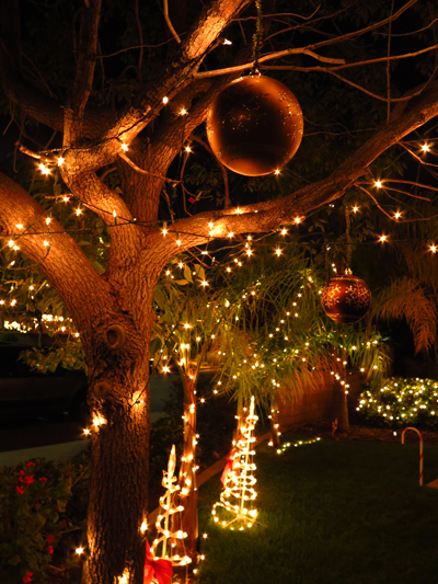 Wordpress weekly photo challenge: Let there be light - Christmas lights