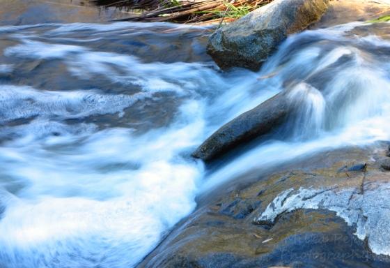 San Diego River at Mission Trails park, San Diego, California