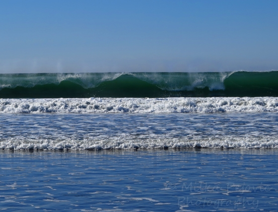Beautiful waves at Coronado Beach, San Diego, California