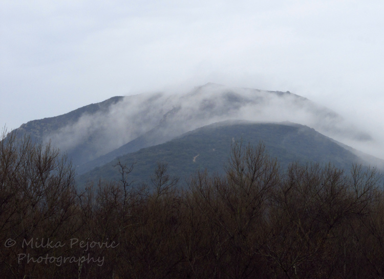 Let's Be Wild Weekly Photo Challenge – Now - hills covered with clouds