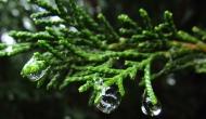 What comes with rain?Raindrops!