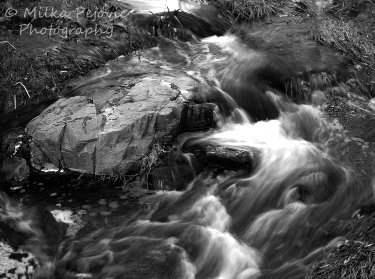 Cee's Fun Foto Challenge: Black and White or Sepia Tones - a water stream