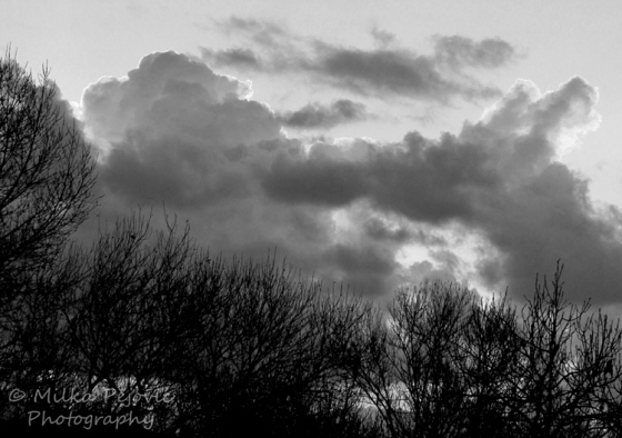 Cee's Fun Foto Challenge: Black and white cloudy sunrise