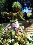 Wordpress weekly photo challenge: Home - amazing topiary at the San Diego Botanic Garden