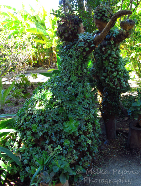 Dancing couple topiary at the San Diego Botanic Garden