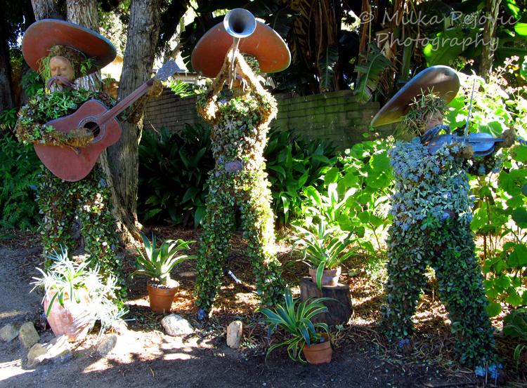 Mariachi band topiary - San Diego Botanic Garden