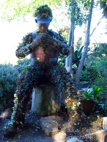 Man admiring nature topiary