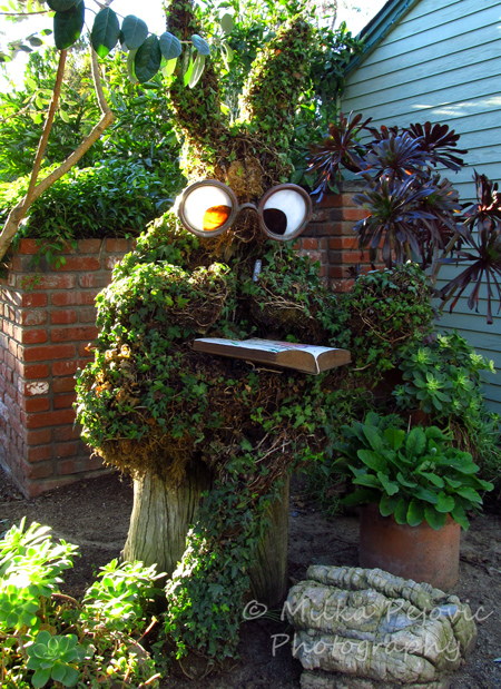 Reading rabbit topiary - San Diego Botanic Garden