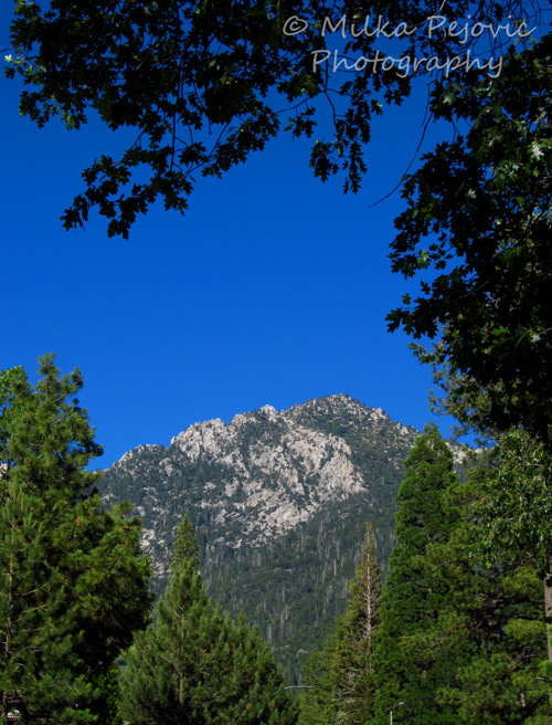 WordPress weekly photo challenge: Up – the mountains of Idyllwild, California