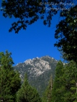 WordPress weekly photo challenge: Up – the mountains of Idyllwild, California