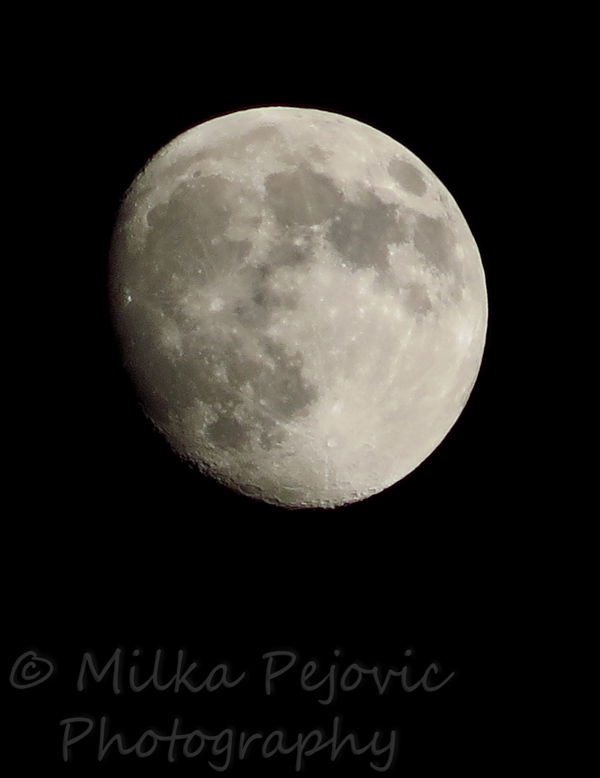 WordPress weekly photo challenge: Focus - almost full moon with craters
