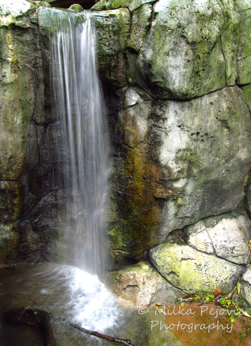 Travel theme: Peaceful waterfall