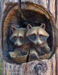 Travel theme: Wood sculpture of lifesize raccoons in tree trunk