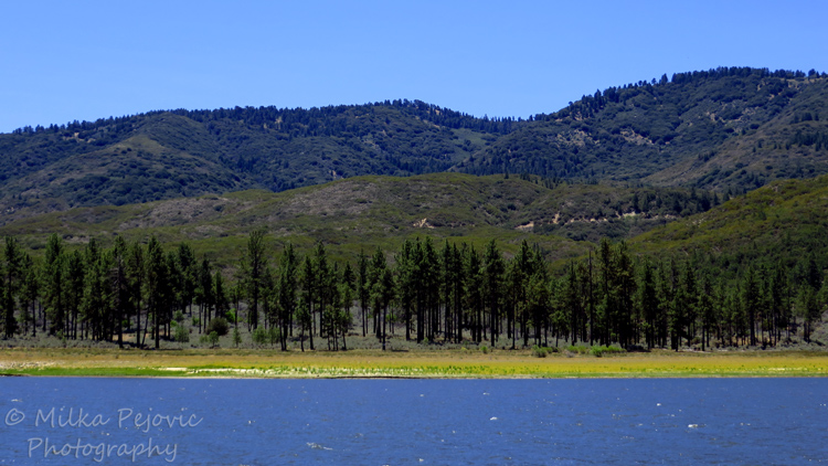 Travel theme: Simplicity of Lake Hemet