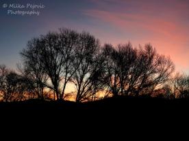 January - winter sunrise
