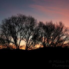 January - sunrise