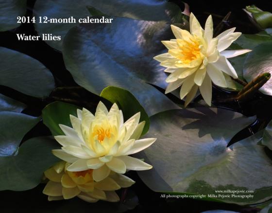 2014 12-month calendar - water lilies