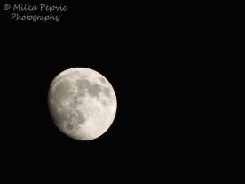 October - almost full moon