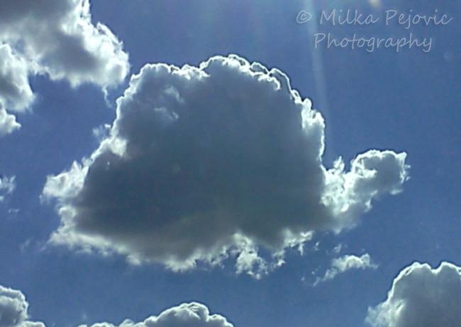 Snail cloud
