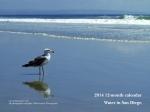 2014 12-month calendar - water in San Diego