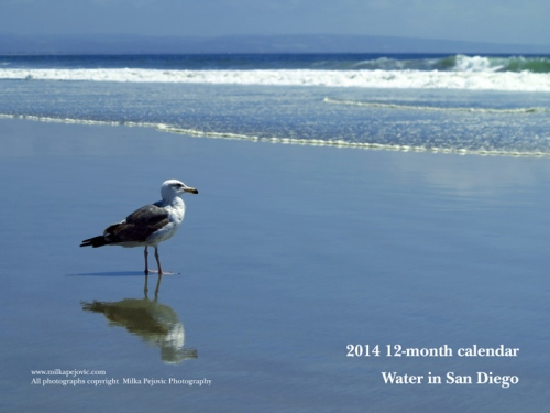2014 12-month calendar - water in San Diego