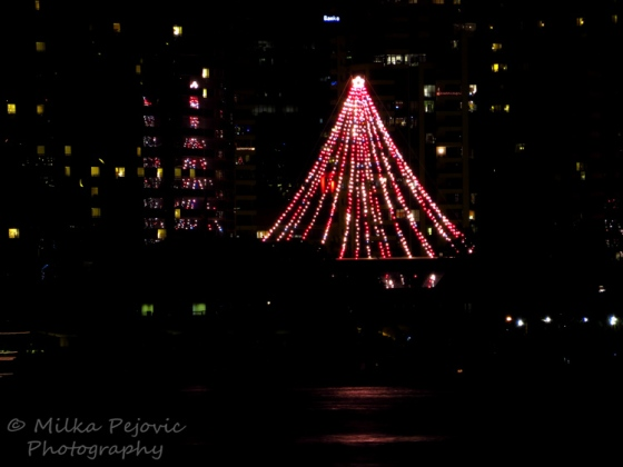 Sunday Post: Christmas tree at San Diego's Seaport Village