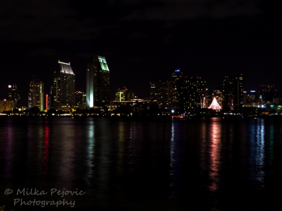 Sunday Post: Christmas tree downtown San Diego at night