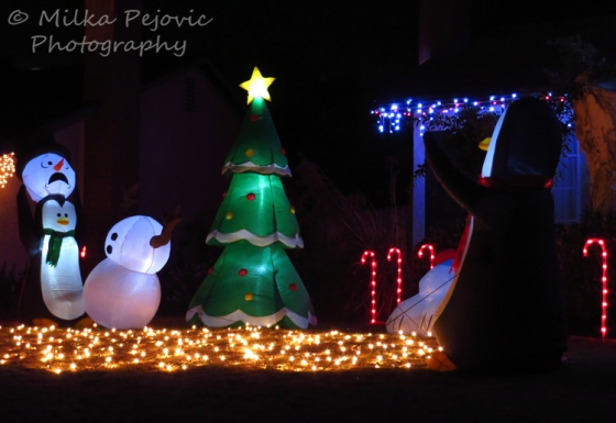 Christmas lights : penguins playing with the snowman's head