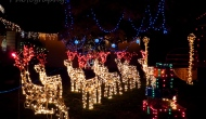 Merry Christmas! Enjoy these Christmas light displays