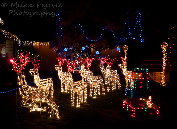 bright christmas lights rudolph and the reindeer pulling santas sleigh