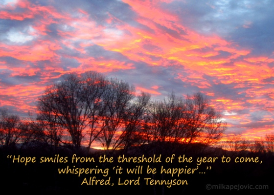 Alfred Lord Tennyson quote