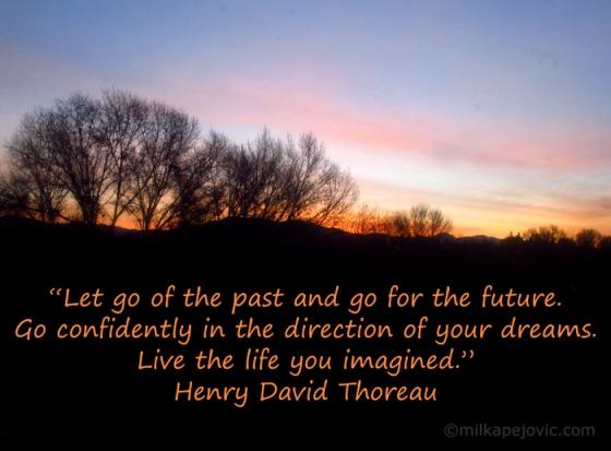 Henry David Thoreau quote