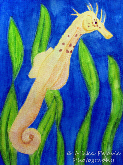 Watercolor painting of a seahorse swimming in sea weeds