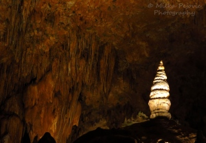 Luray Caverns - small stalagmite