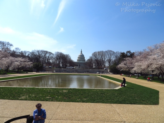 The US Capitol from the side