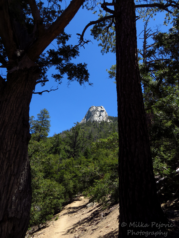 View of Mount Jacinto while hiking on the Ernie Maxwell scenic trail