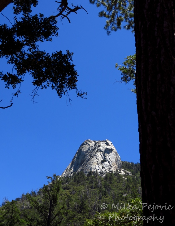 Cee's Fun Foto Challenge: the color blue - blue sky in Idyllwild, California